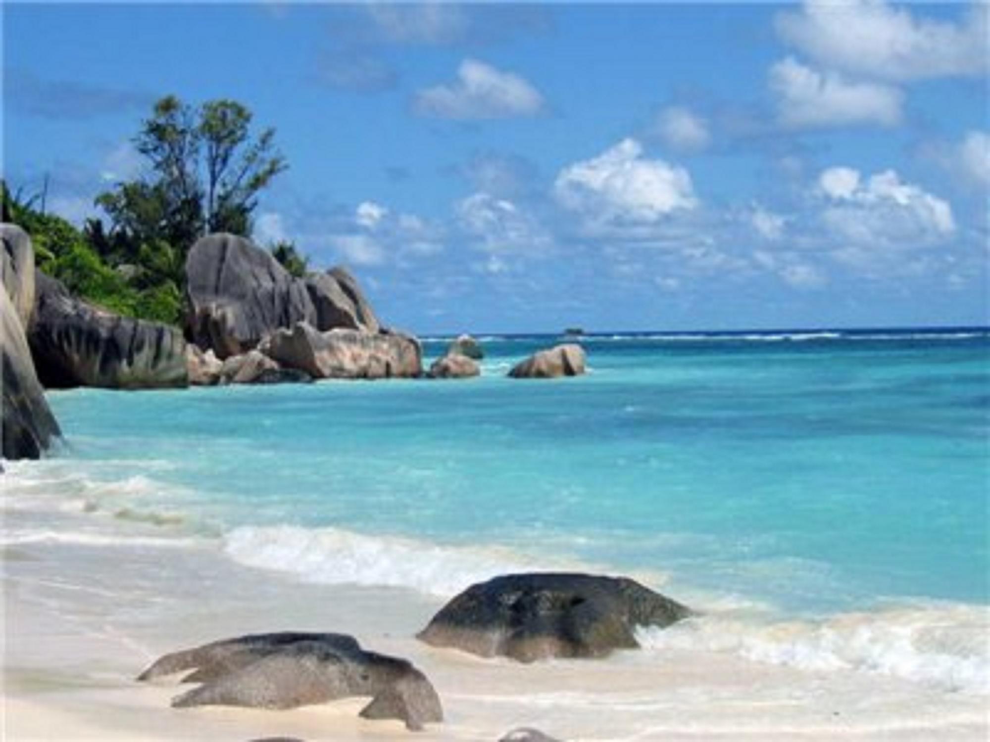 Фото девушек с бермудских островов 7 фотография